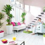 Sfaturi Feng Shui pentru armonie in casa ta